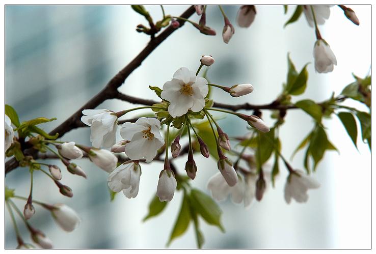 炭川_45
