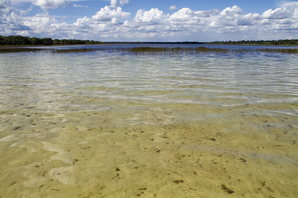 Aguas transparentes de Laguna Blanca, cerca de Santa Rosa del Aguaray. (San Pedro, Paraguay - Tetsu Espósito)