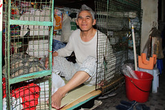 Man in a metal cage (Pondspider) Tags: poverty china man hongkong apartments families chinese cubicle cage elderly hmo immigrants 香港 soco slum kok cubicles mong dwellings slumlord landlords taikoktsui anneroberts metalcages anchorstreet annecattrell societyforcommunityorganization housesinmultipleoccupation pondspider cubiclehomes cagedweller cagedwellings fuktsunstreet fuktsuenstreet 香港社區組織協會 cubicleapartments cubicleapartment