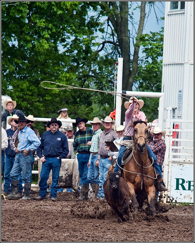 Calf roping    ____4099 (by Silver Image)