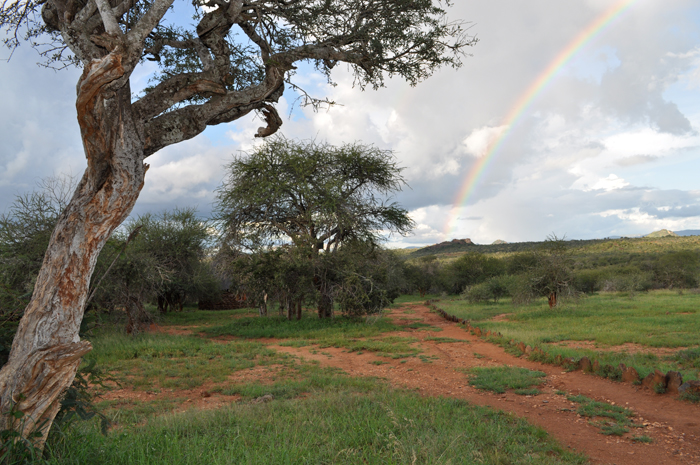 Rainbow Over the Mpala Research Center