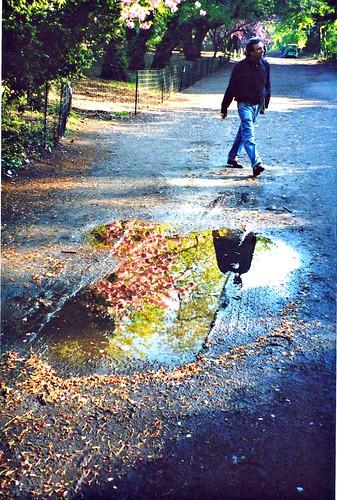 puddle0f2