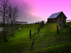 Missoula, Montana (ayresphotography) Tags: leica trees sky horse green grass barn fence landscape outside lumix montana mt farm missoula dmcl1