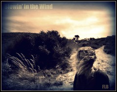 Blowin' in the Wind (Francesco La Barbera) Tags: wild sky bw italy woman girl sepia clouds hair countryside blackwhite donna italia nuvole wind cloudy country bn campagna cielo blonde sicily bianconero sicilia vento trapani bionda scopello stealingshadows artistictreasurechest artisawoman theauthorsplaza
