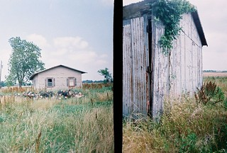 abandoned house & shed (1): Golden Half