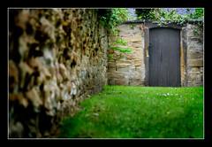Old Doorway (SFB579 :)) Tags: door wood brown tree green stone forest garden flora purple roots textures fallen rough