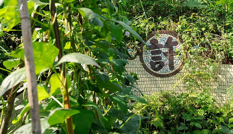 100517 台北 芳蘭山 墓區與居民的折衷空間利用