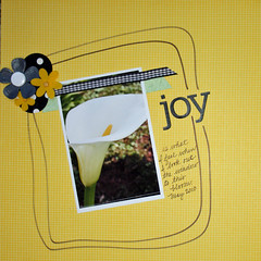 Joy (SherryGrove) Tags: day17 12x12 singlephoto load0510