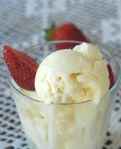 vaniljejäätis/vanilla ice-cream