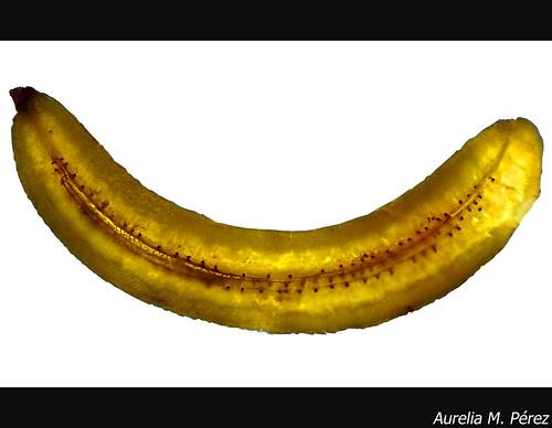 Banana Smile  (Explored)