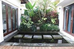 IMG_1124 (jengillen) Tags: travel vacation bali indonesia zoo monkey asia tropical ubud kuta denpasar