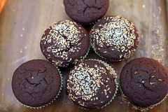 Coconut Flour Cupcake