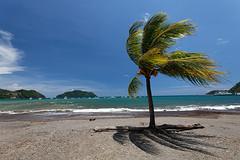 baudchon-baluchon-costa-rica-manuel-antonio