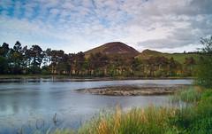 Bowdenmoor Reservoir (Bernie Bell) Tags: trees summer sky nature water clouds reeds pond sony reservoir hills 1855 cpl cokin eildons kitlense nd8 cokinndgrad8 sonyalpha230