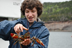 Fresh Lobster on Cape Breton Island