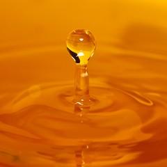 Drop! (wl) Tags: macro water yellow canon lens eos is droplets bucket flash 100mm ii droplet soe f28 430 430ex supershot 450d mywinners flickrdiamond macromarvels rubyphotographer kissx2