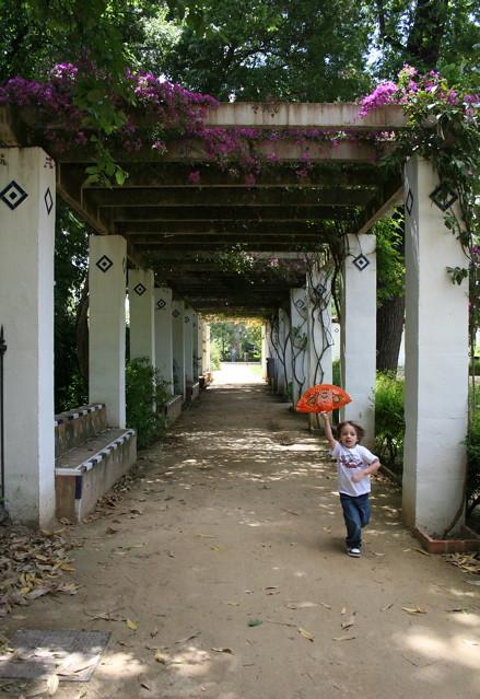 Dianas- Spain 2010 325