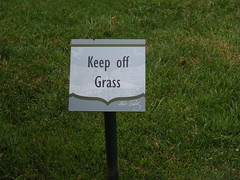 keep off graceland's grass