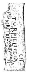 Turpillian Stone