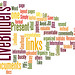 LiveBinders Presentation