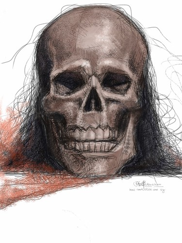 skull study 3 colour on iPad