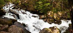 Stream Stitch #4 (absencesix) Tags: trees panorama plants usa nature washington stream unitedstates iso400 events may noflash northamerica 1020mm 16mm hikes locations 2010 locale verticalstitch canon30d mountbakersnoqualmienationalforest canoneos30d mtbakersnoqualmienationalforest laketalapustrail camera:make=canon geo:state=washington exif:make=canon exif:iso_speed=400 apertureprioritymode hasmetastyletag hascameratype naturallocale selfrating2stars exif:focal_length=16mm 150secatf90 may152010 geo:countrys=usa exif:lens=100200mm exif:model=canoneos30d camera:model=canoneos30d exif:aperture=ƒ90 laketalapus05152010 subjectdistanceunknown geo:lat=47411153751354 geo:lon=12151393584916 geo:city=mountbakersnoqualmienationalforest mountbakersnoqualmienationalforestwashingtonusa 47°2440n121°3050w