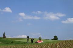 パノラマロード( panorama road )上很重要的 赤い屋根のある丘 (紅屋頂的小屋)