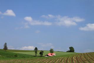 赤い屋根のある丘 (紅屋頂的小屋)
