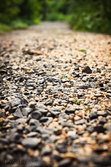 """Go confidently in the direction of your dreams. Live the life you have imagined."" ~Henry David Thoreau (photos by nadya) Tags: inspiration david 50mm rocks dof path henry quotes dreams thoreau canonxs 1000d"