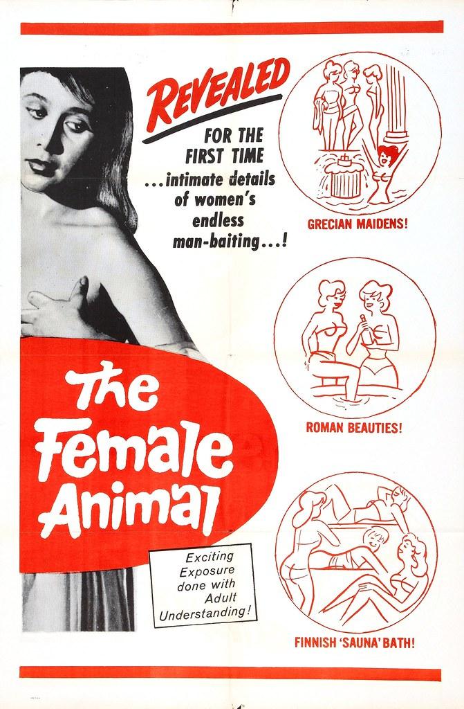 female_animal_1954_poster_01