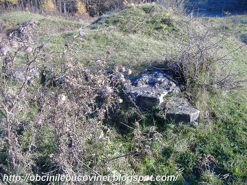 Cetatea Scheia 047