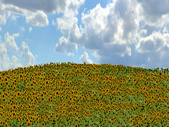 P4190792 (gpaolini50) Tags: emotive esplora explore explored emozioni explora emotion city colore landscape luce photoaday photography photographis photographic photo phothograpia pretesti photoday paesaggio panorami