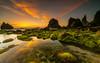 Ocean grass   [ explore 07|07|2017 ] (marcolemos71) Tags: seascape sea atlanticocean portuguesecoast lowtide stones rocks seaweed water naturalpools ursa beach longexposure leefilters sintra dusk sunset marcolemos