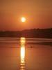Istria - Sunset in Pomer (einaz80) Tags: sunset tramonto twilight dusk pomer istria istarska istrian peninsula penisola istriana orange sun sole sea mare adriatico adriatic mediterranean mediterraneo