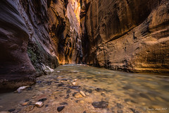 Zion Narrows: Wall Street (NettyA) Tags: 2017 canyon sonya7r thenarrows usa utah virginriver zionnarrows zionnationalpark travel wallstreet southwest