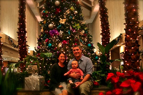 Family Photo - Florida Christmas tree
