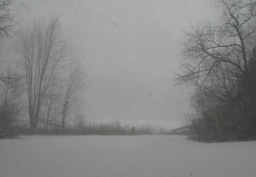 Blizzard obscuring the view of the lake