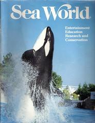 Kasatka (Shamufan88) Tags: dolphins whales shamu rare orcas killerwhales