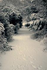old tram tracks () Tags: snow cold scenic frosty fresh firstsnow snowfall isleofman ramsey mywalktowork