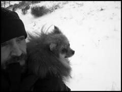 dana hilliot - l'expédition polaire (en face de chez moi)