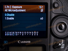 1D MarkIV AE Microadjustment Menu NEW