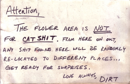 Attention, The flower area is NOT for CAT SHIT. From here on out, any shit found here will be randomly re-located to different places... Get ready for surprises. Love always, Dirt