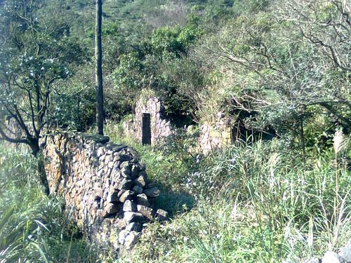 大粗坑聚落遺址