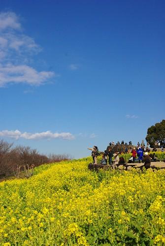 100116 新春☆春を先取りツアー02