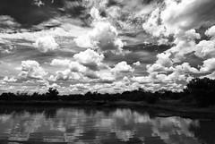 Natura profonda - Deep Nature (Stefano Mazzoni) Tags: blackandwhite bw cloud nature landscape southafrica bush nuvole bn explore frontpage swaziland biancoenero tokina1224mmf4 savana nikond60 stefanomazzoni fifaworldchampionship2010