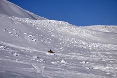 153 MASSIVE AVY (kira97) Tags: lewis hills sleds