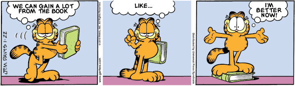 Garfield: Lost in Translation, January 22, 2010