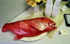Sally's Fish Cake (Georgie_grrl) Tags: fish toronto ontario cake yummy awesome pentaxk1000 opening feedme bysally cans2s stclairavenuewest sidespacegallery rikenon12828mm houseoftherisingcake