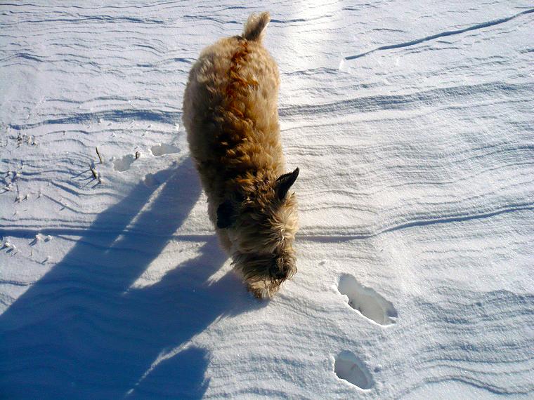 jigs-snow-ridges
