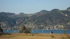 Thunersee ( See / Lac / Lake ) beim Gwatt im Kanton Bern in der Schweiz (chrchr_75) Tags: schnee winter snow mountains alps nature landscape schweiz switzerland suisse swiss hiver natur berge neige alpen christoph svizzera gletscher landschaft wallis 0704 grosser valais skitour aletschgletscher suissa lötschental kanton chrigu lötschenlücke chrchr kantonwallis hurni chrchr75 chriguhurni skiwandern albumunterwegsindenwalliseralpen hurni070415